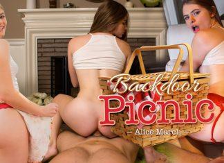 Backdoor Picnic