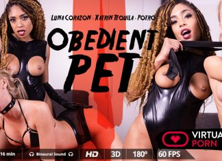 Obedient pet